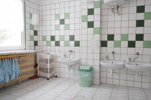 Łazienka Łabędzi